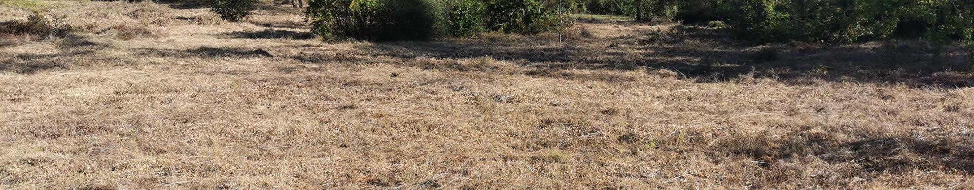 LORGUES, terrain agricole de 2085 m²