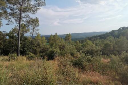 Lorgues , joli terrain en restanque de 1274 m² avec vue - Image 2